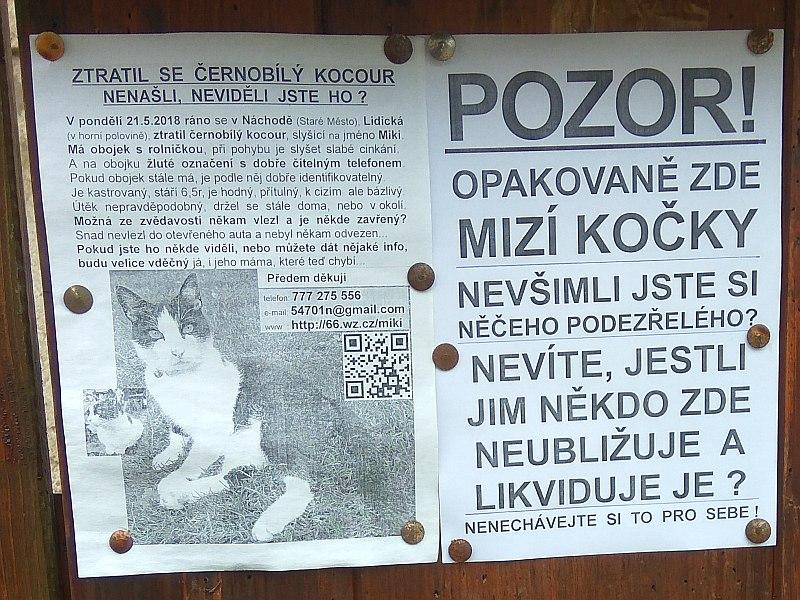 Miki - plakát